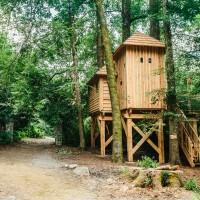 Une cabane en forme de château dans les arbres