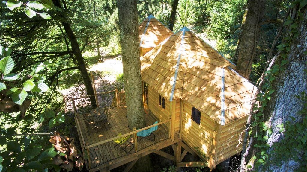 Vue aérienne d'une cabane dans les arbres