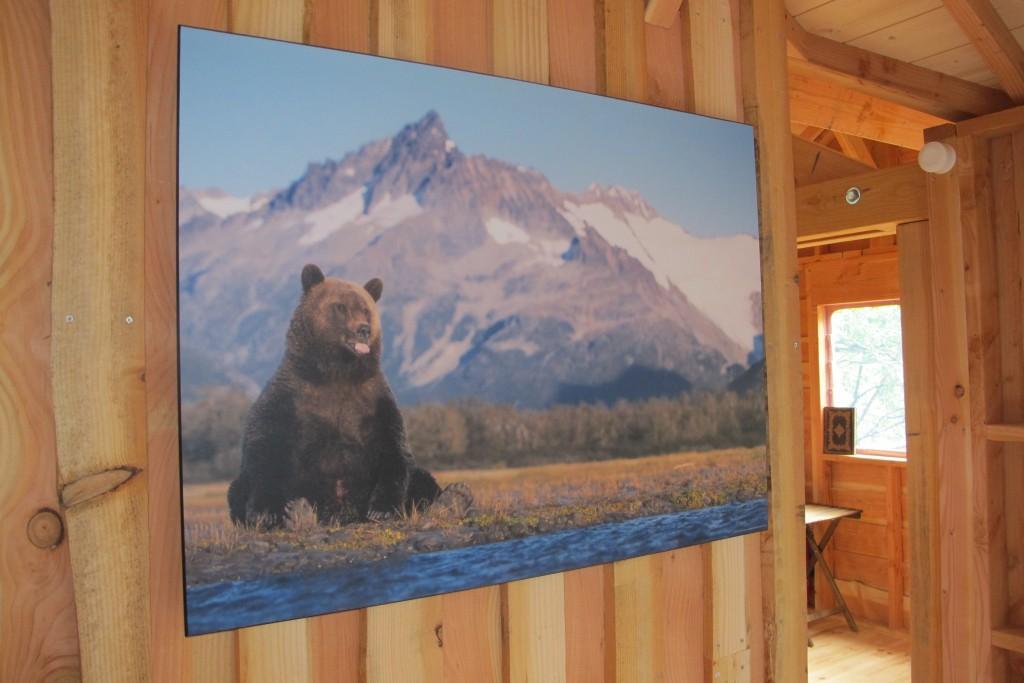 Affiche ours dans une cabane perchée