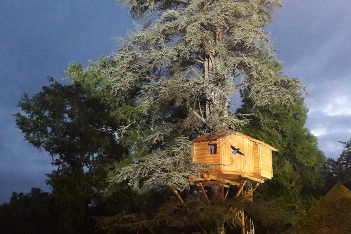 la cabane des pyr n es cabane dans les arbres pour couple. Black Bedroom Furniture Sets. Home Design Ideas