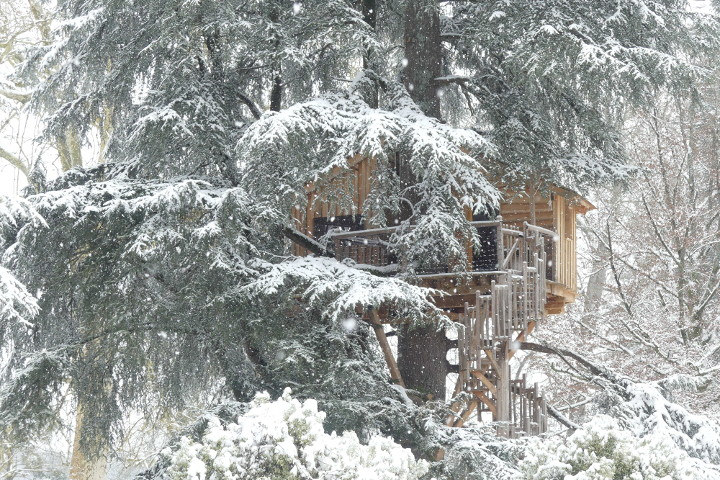 neige cabane arbre